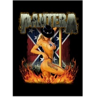 Pantera Girl South Fabric Poster Flag
