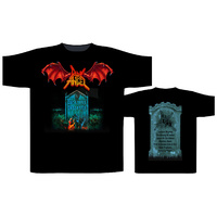 Dark Angel Darkness Descends Shirt