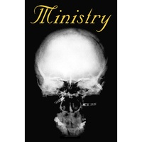 Ministry The Mind Is A Terrible Thing To Taste Poster Flag