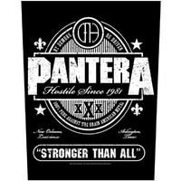 Pantera Stronger Than All Back Patch
